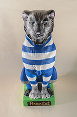 Dyce FC Home Cat